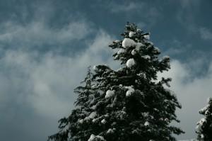 K-rと雪がすごすぎて震えが来たメリクリ
