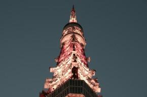 東京タワーに登って降りろ 帰省その2