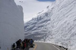 快晴の雪の大谷から黒部ダムまで満喫してきた【写真沢山】