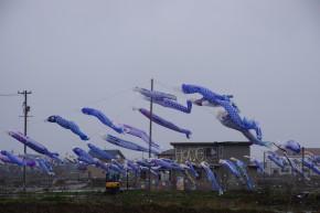 2012年5月東北。その1 富山〜仙台-石巻-女川-南三陸